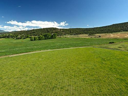 183.25 Acres in Montrose, Colorado : Montrose : Colorado
