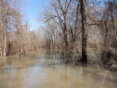 Price Reduced, 245 Acres : Portia : Lawrence County : Arkansas