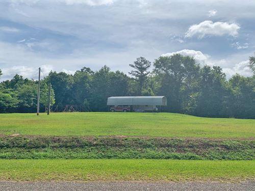 Hank Williams Road Tract : Georgiana : Butler County : Alabama