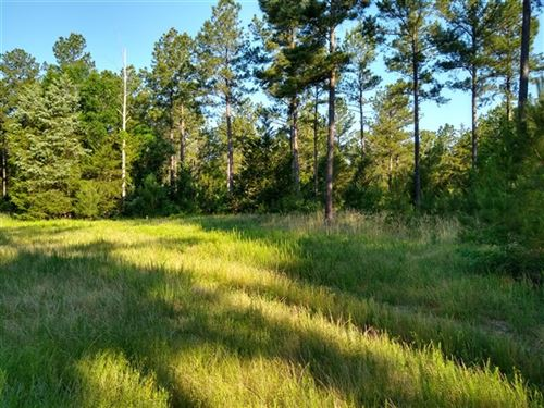 227 Acres, Fairfield County, Sc : Winnsboro : Fairfield County : South Carolina