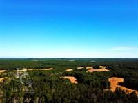 Beaver Creek Farm : Blair : Fairfield County : South Carolina