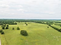 Tx Cattle Ranch For Sale : Annona : Red River County : Texas