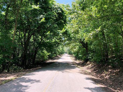 Sulphur Creek Tract : Paris : Benton County : Tennessee