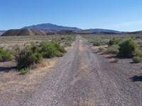 Awesome, Paved Access, $325 P/Mo : Lovelock : Pershing County : Nevada