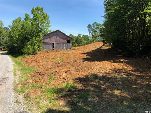 2.54 Acre Wooded Lot With Barn : Edmonton : Metcalfe County : Kentucky