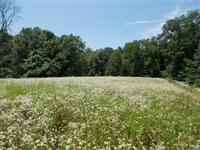 Land For Sale Sullivan County Indi : Lewis : Sullivan County : Indiana