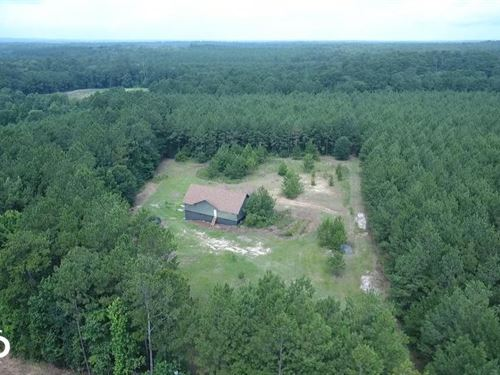 14 Acre Homesite Bordering National : New Waverly : San Jacinto County : Texas