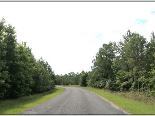 58 Acres In Winston County In McCoo : McCool : Winston County : Mississippi