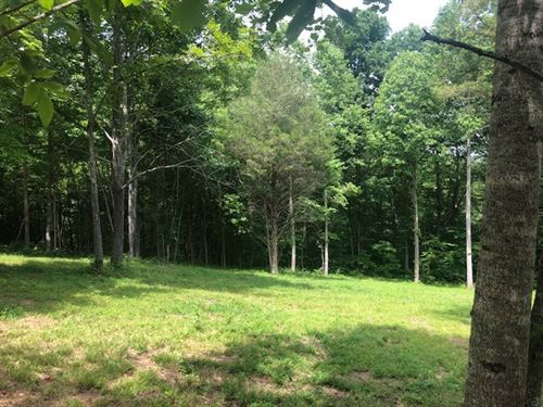 Williamson County Land For Sale : Franklin : Williamson County : Tennessee