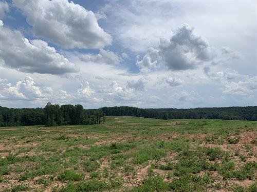 Oconee Meadow Tract : Watkinsville : Oconee County : Georgia