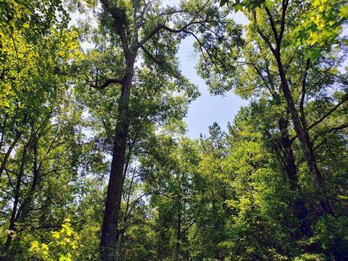 Ridgeway Retreat : Ridgeway : Richland County : South Carolina