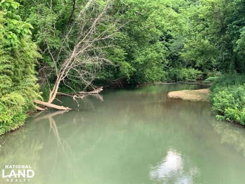 White's Creek Hunting Tract : Decaturville : Decatur County : Tennessee