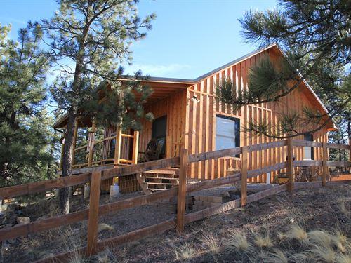Cabin Westcliffe, CO Custer County : Westcliffe : Custer County : Colorado