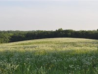 160 Acres, 131 Tillable, Gentry : King City : Gentry County : Missouri