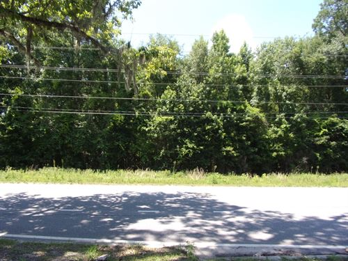 19.7 Wooded Acres Highway Frontage : Guyton : Effingham County : Georgia
