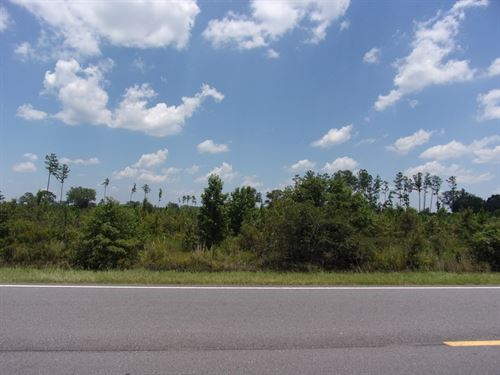 155 Acres Highway 119 Ogeechee : Stilson : Bulloch County : Georgia