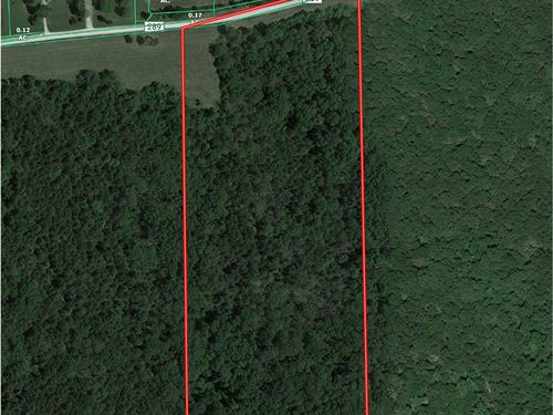 Mo Land For Sale Hunting/Build Site : Wayland : Clark County : Missouri
