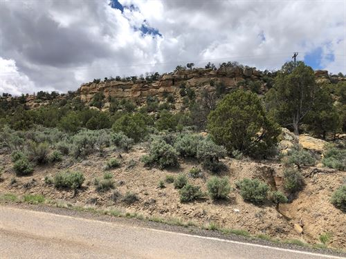 Ecellant Land Navajo Lake Abundant : Navajo City : San Juan County : New Mexico