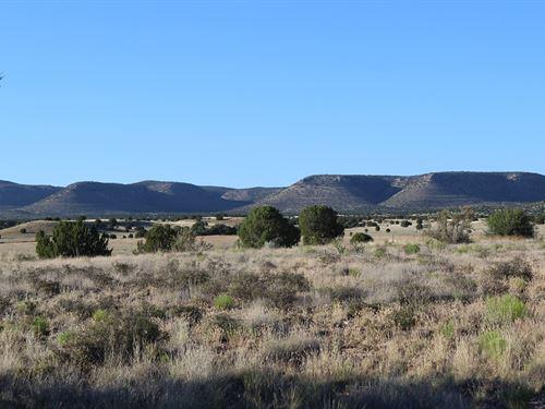 Near Airstrip Borders National : Paulden : Yavapai County : Arizona