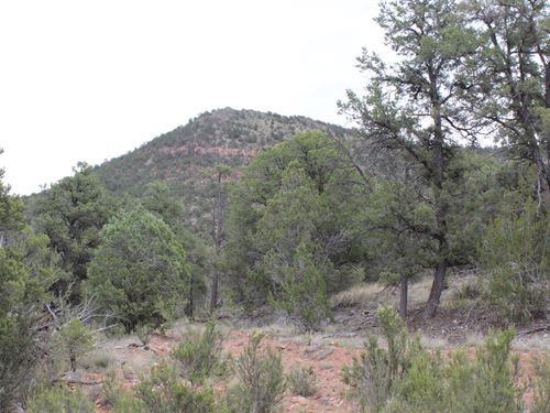 Private Rural Mountain Land Arizona : Seligman : Yavapai County : Arizona