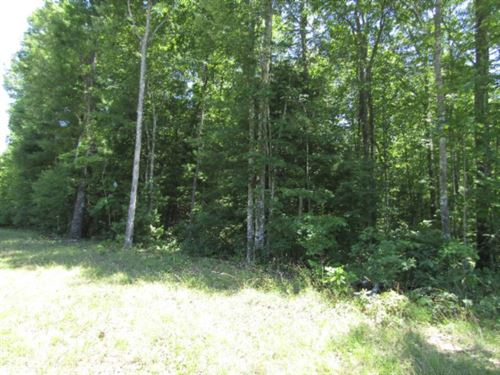 2+ Ac In Spruce Creek Acres : Jamestown : Fentress County : Tennessee