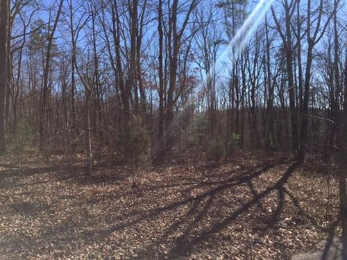 6.3+/- Acres Wooded Lot Near Chatt : Dunlap : Sequatchie County : Tennessee