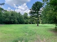 Hunting Land Near Talladega : Talladega : Alabama