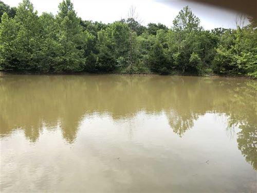 10 Gorgeous Acres, Cabin Just : Cole Camp : Benton County : Missouri