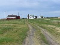 Home With Acreage For Sale : Brady : Pondera County : Montana