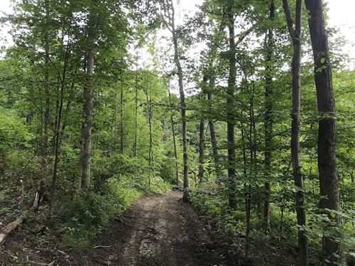 Pert Hill Rd, 28 Acres : Nashport : Muskingum County : Ohio