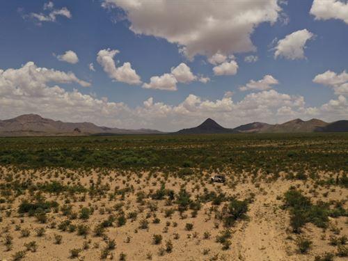 High Desert 40 Acres : Alpine : Brewster County : Texas