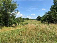 228 Acres For Sale In Pickens Co Ga : Fairmount : Pickens County : Georgia