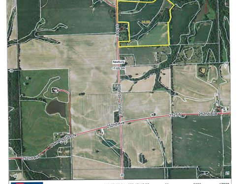Nice Tillable Farm With Pond : Pittsfield : Pike County : Illinois