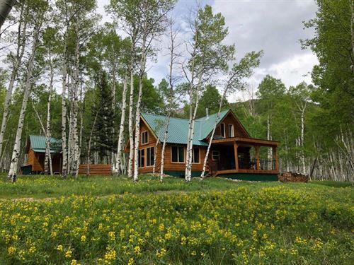 Four Seasons Colorado Cabin : Jasper : Rio Grande County : Colorado