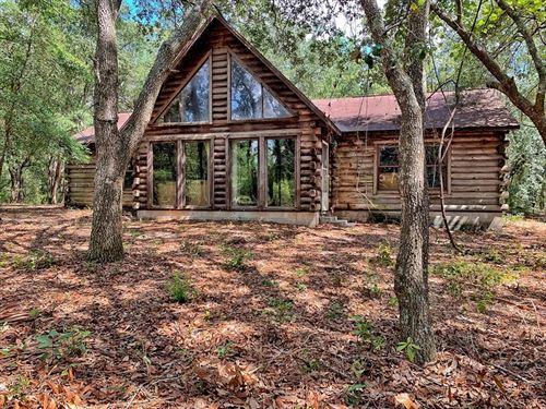 Rustic Log Cabin Acreage, 77+ Acres : Trenton : Gilchrist County : Florida