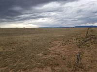 Central NM Ranch Land Acreage : Estancia : Torrance County : New Mexico