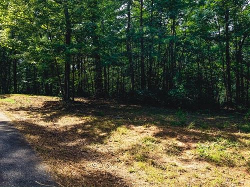 Recreational Land Auction Ferguson : Ferguson : Wilkes County : North Carolina