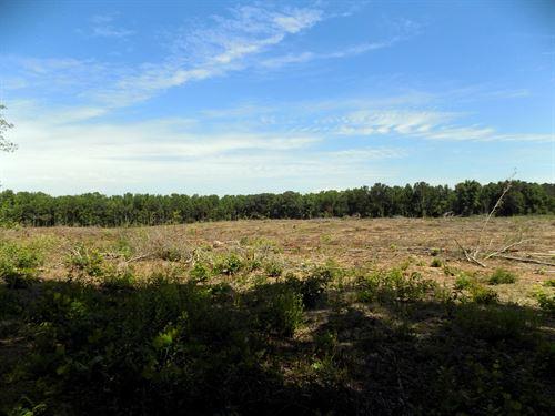 Chesterfield Co Sc Acreage & Stream : Cheraw : Chesterfield County : South Carolina