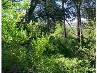 Property Near In Lake Cuyamaca, Ca : Julian : San Diego County : California