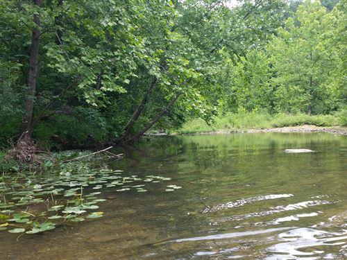 Bear Claw Spring, Live Water : Eunice : Texas County : Missouri