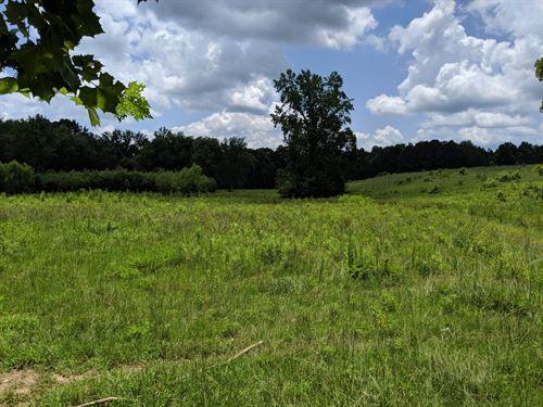 Wehadkee Creek Farm : Roanoke : Randolph County : Alabama