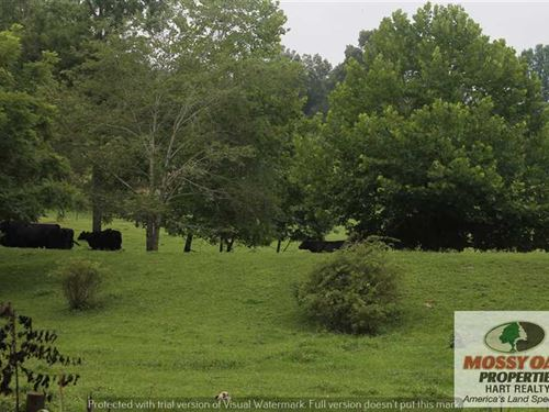 21 Acres Ready to be Your Farm : Magnolia : Hart County : Kentucky