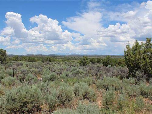 Pump Mesa Ranch : Navajo Dam : San Juan County : New Mexico