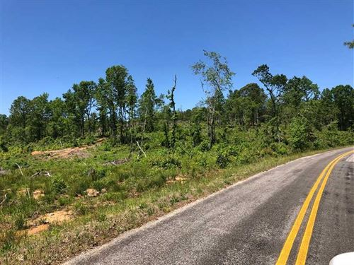 62 Acres Near Hamilton, Alabama : Hamilton : Marion County : Alabama