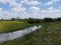 Genuine Florida Outdoor Ranch : Punta Gorda : Charlotte County : Florida