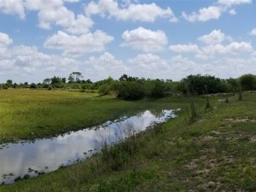 Genuine Florida Outdoor Ranch : Punta Gorda : Charlotte County : Florida