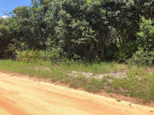 Lot, Central Florida, Great : Lake Wales : Polk County : Florida