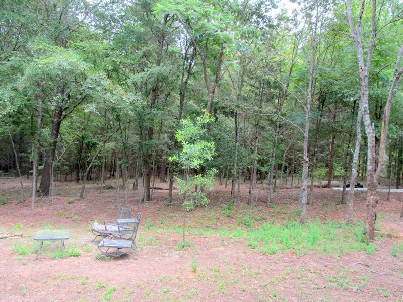 18 + East Texas Acres, Camp County : Land for Sale : Pittsburg : Camp  County : Texas