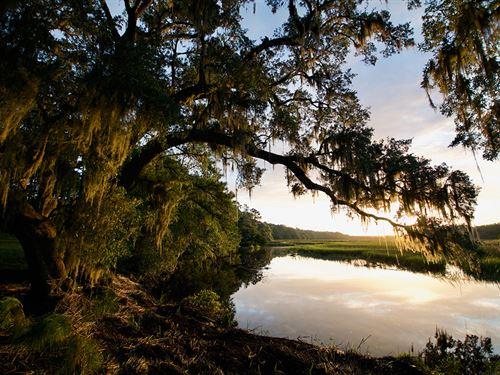 Bindon Plantation : Sheldon : Beaufort County : South Carolina
