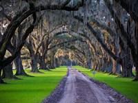 Tomotley Plantation : Yemassee : Beaufort County : South Carolina
